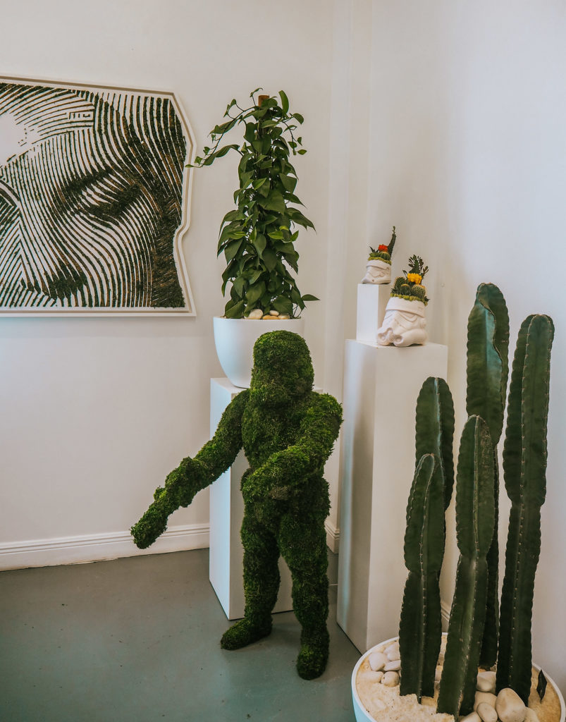 Plant the future moss art conscious guide