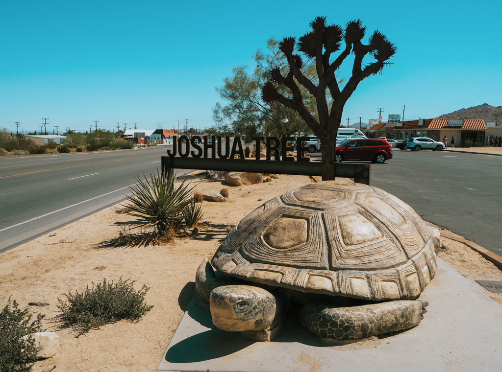 Conscious Travel Guide Joshua Tree