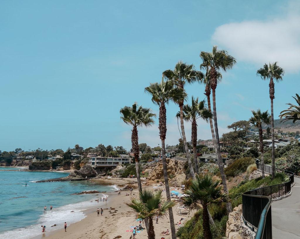Laguna Beach Cove framed by Palm Trees